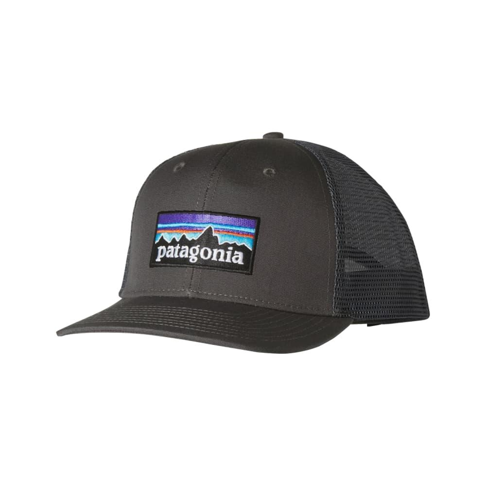 Patagonia P-6 Trucker Hat FGE