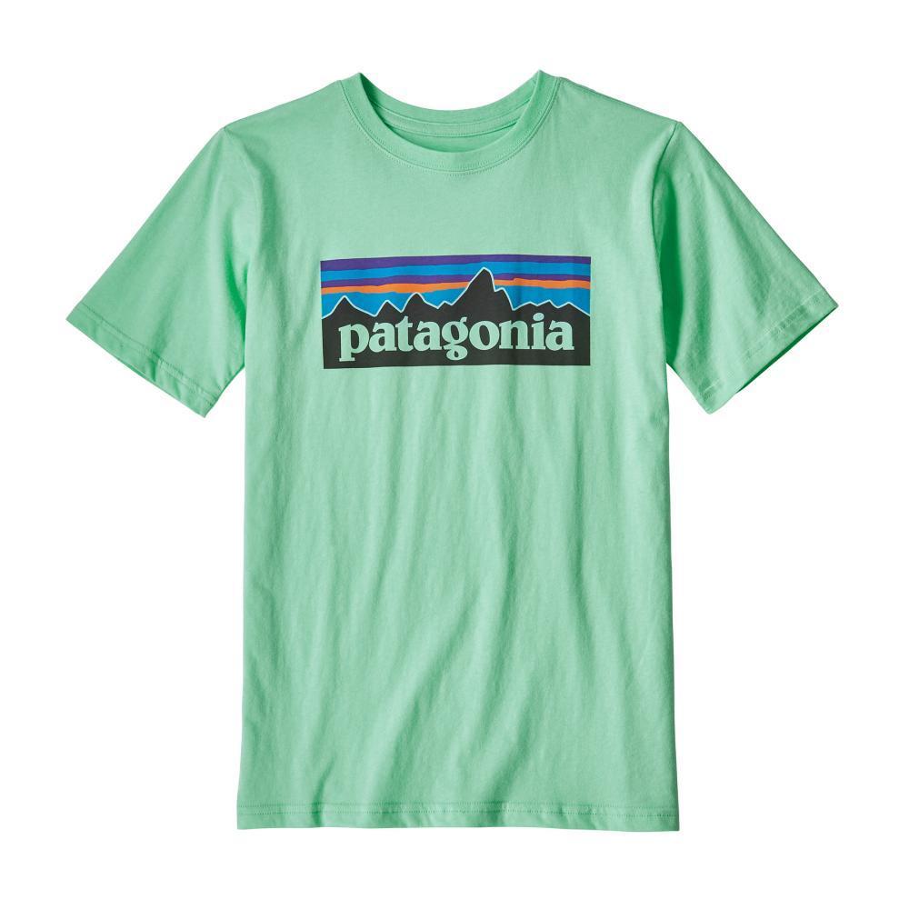 Patagonia Kids P-6 Logo Organic T-Shirt VGRN_VJOG