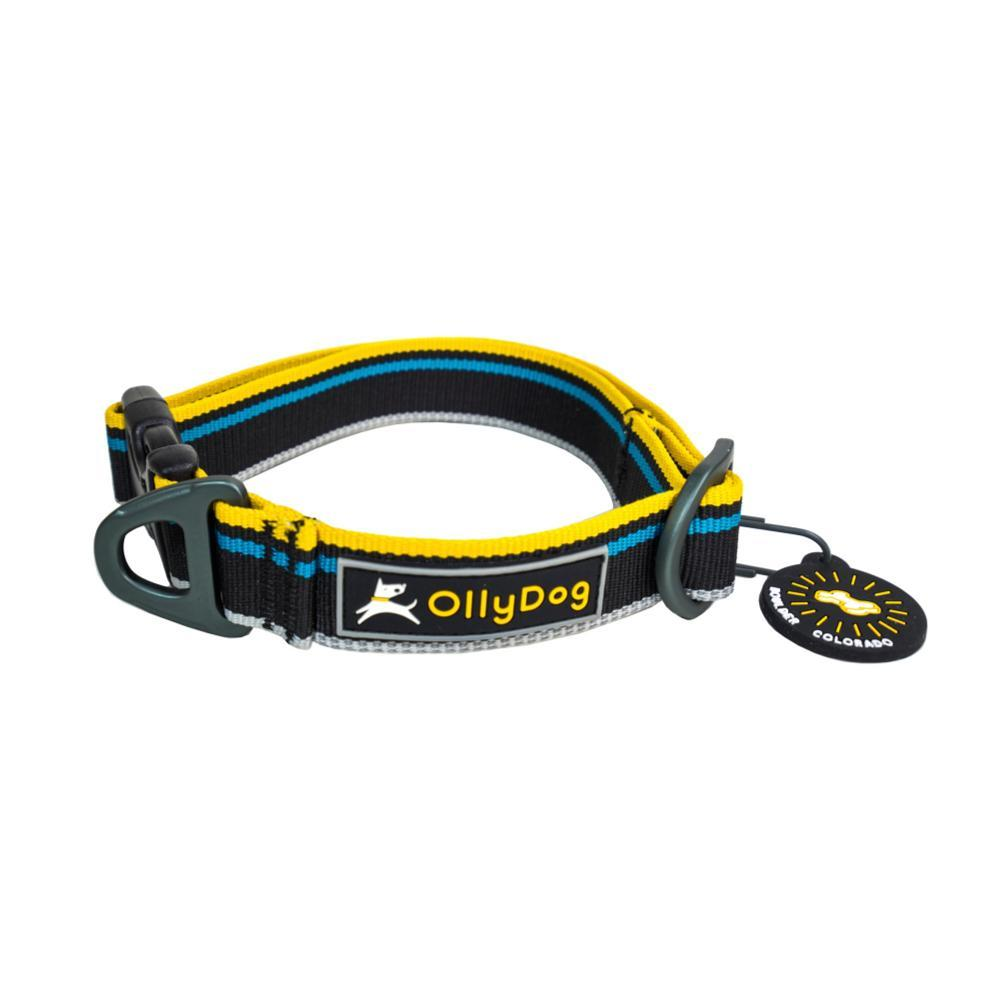 OllyDog Urban Trail Reflective Collar - Anthracite - Medium ANTHRACITE