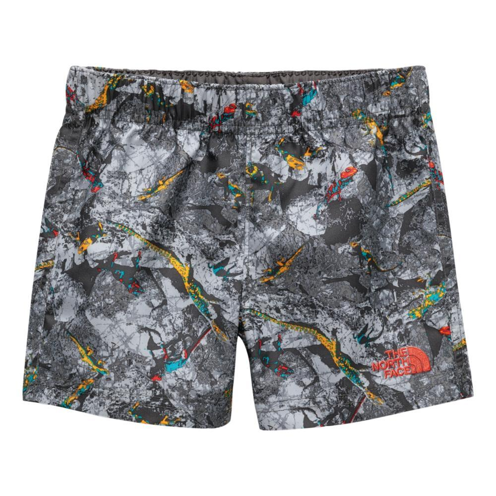 The North Face Toddler Hike Water Shorts LIZARD_9CX