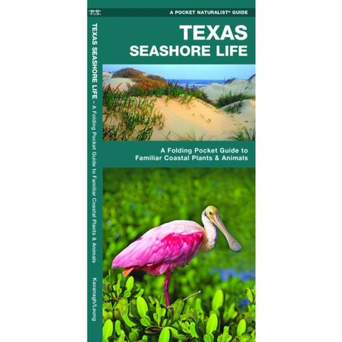 Texas Seashore Life: A Folding Pocket Guide to Familiar Coastal Plants & Animals by James Kavanagh