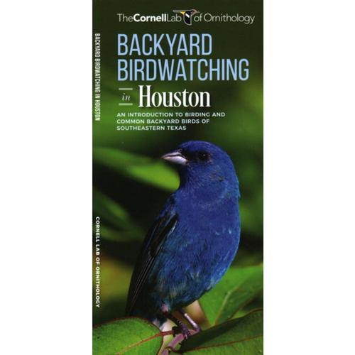 Backyard Birdwatching in Houston: An Introduction to Birding and Common Backyard Birds of Southeastern Texas by Jill Kavanagh