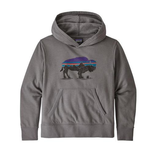 Patagonia Kids Lightweight Graphic Hoody Sweatshirt Fgrey_fzfe