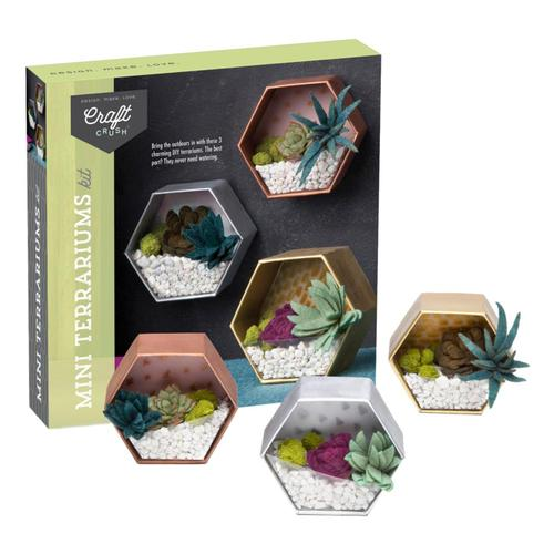 Ann Williams Group Craft Crush Mini Terrariums Kit
