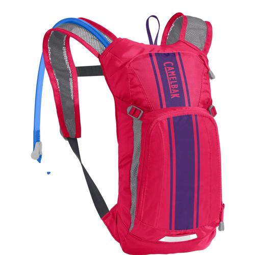 CamelBak Kids Mini M.U.L.E. 50oz Hydration Pack Pnkpurp