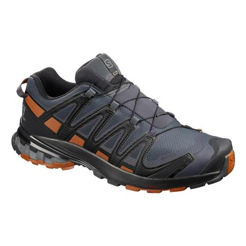 Salomon Men's XA PRO 3D V8 GTX Trail Running Shoes Eb.Crml.Blk