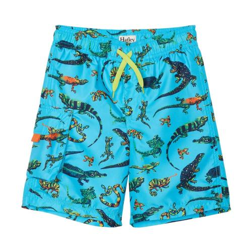 Hatley Boys Rambunctious Reptiles Swim Trunks Blueatol