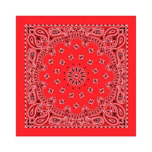 Paisley Bandana Red