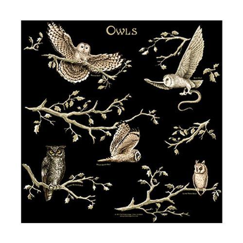 Owls Bandana
