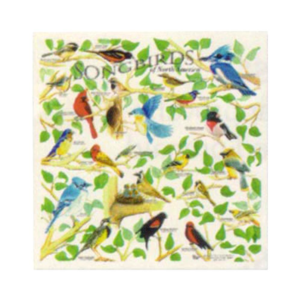 Songbirds Bandana BIRDS