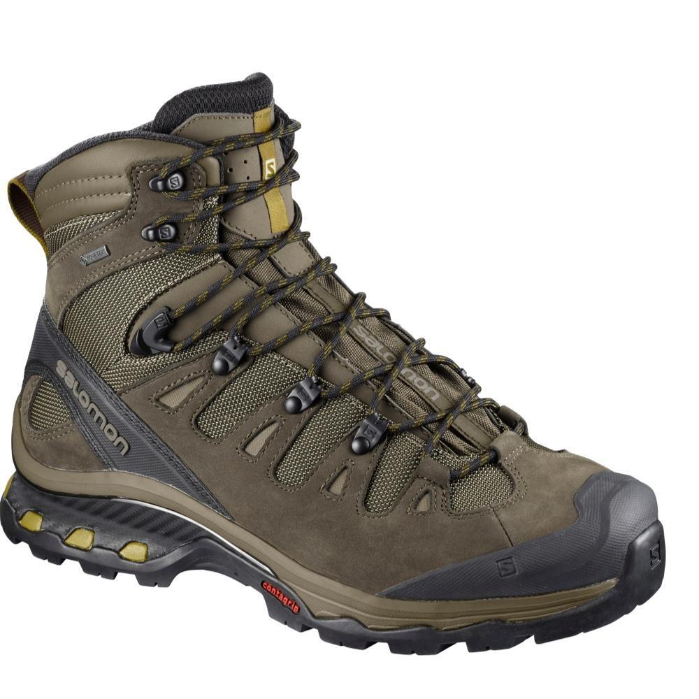 Salomon Men's QUEST 4D 3 GTX Hiking Boots WREN.BNG.GSL