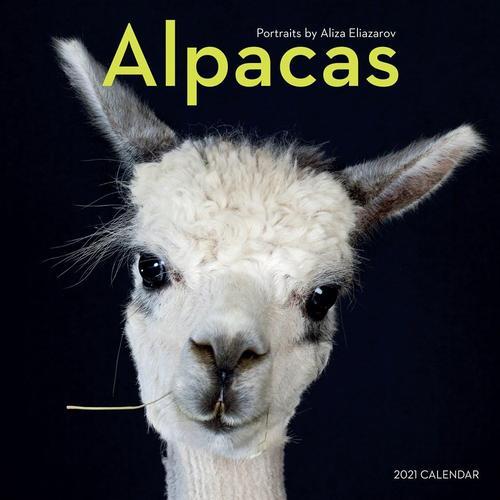 Alpacas Wall Calendar 2021 2021