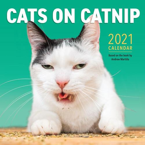 Cats on Catnip Wall Calendar 2021 2021