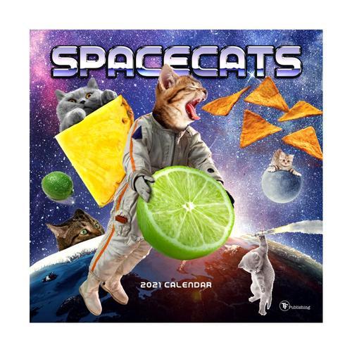 Space Cats Wall Calendar 2021 2021