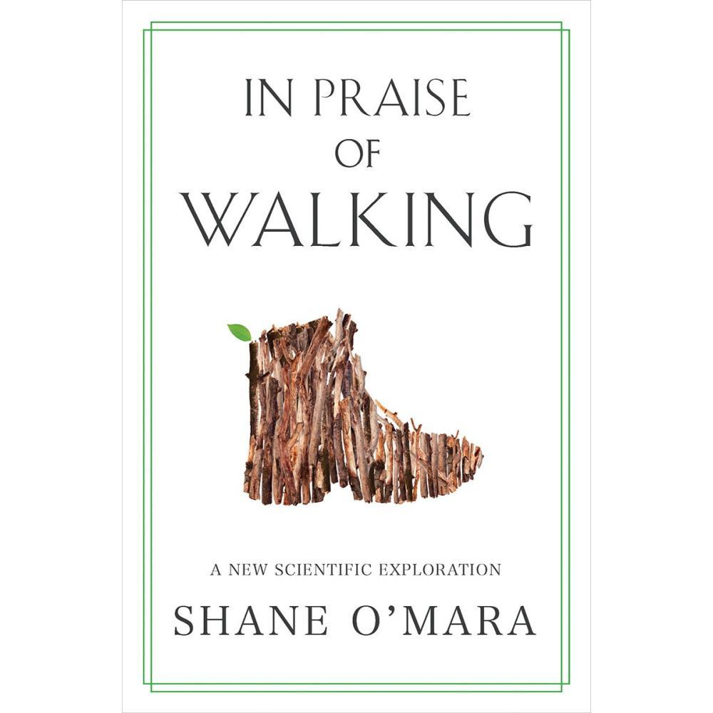 In Praise Of Walking By Shane O ' Mara