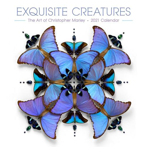 Exquisite Creatures: The Art of Christopher Marley 2021 Wall Calendar 2021
