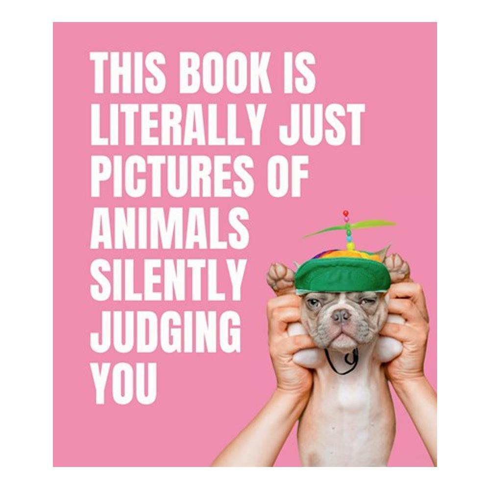 This Book Is Literally Just Pictures Of Animals Silently Judging You By Smith Street Books