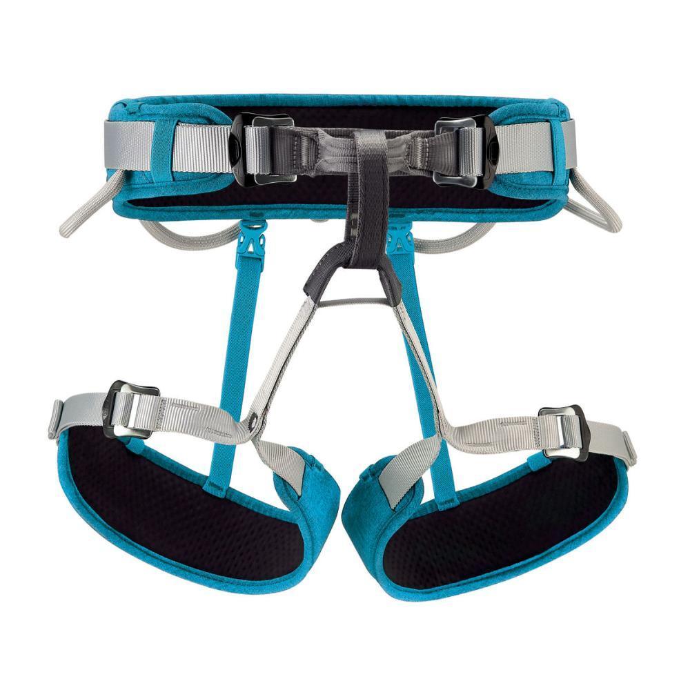 Petzl CORAX Harness - Size 2 TURQ