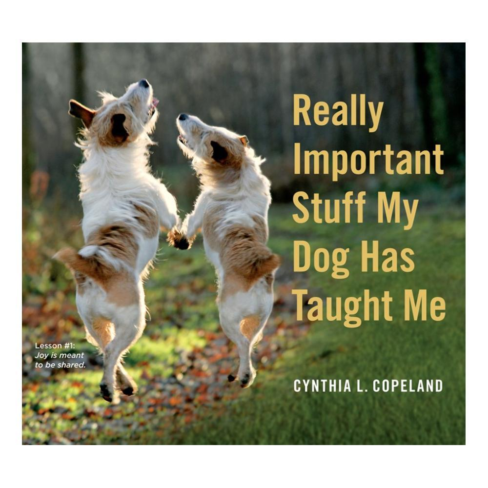 Really Important Stuff My Dog Has Taught Me By Cynthia L.Copeland