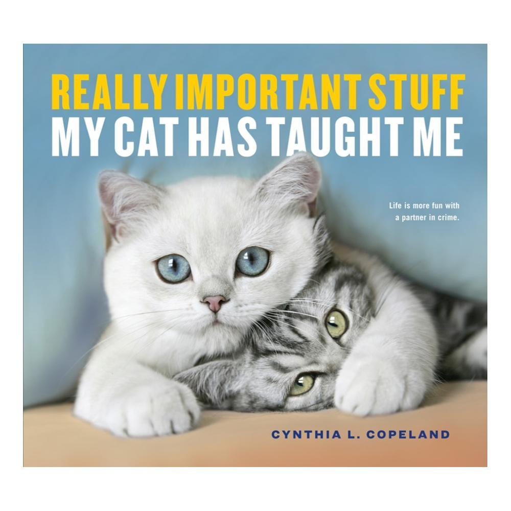 Really Important Stuff My Cat Has Taught Me By Cynthia L.Copeland
