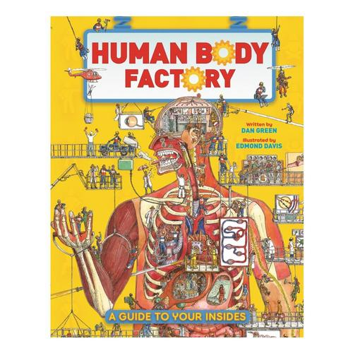 The Human Body Factory: The Nuts and Bolts of Your Insides by Dan Green