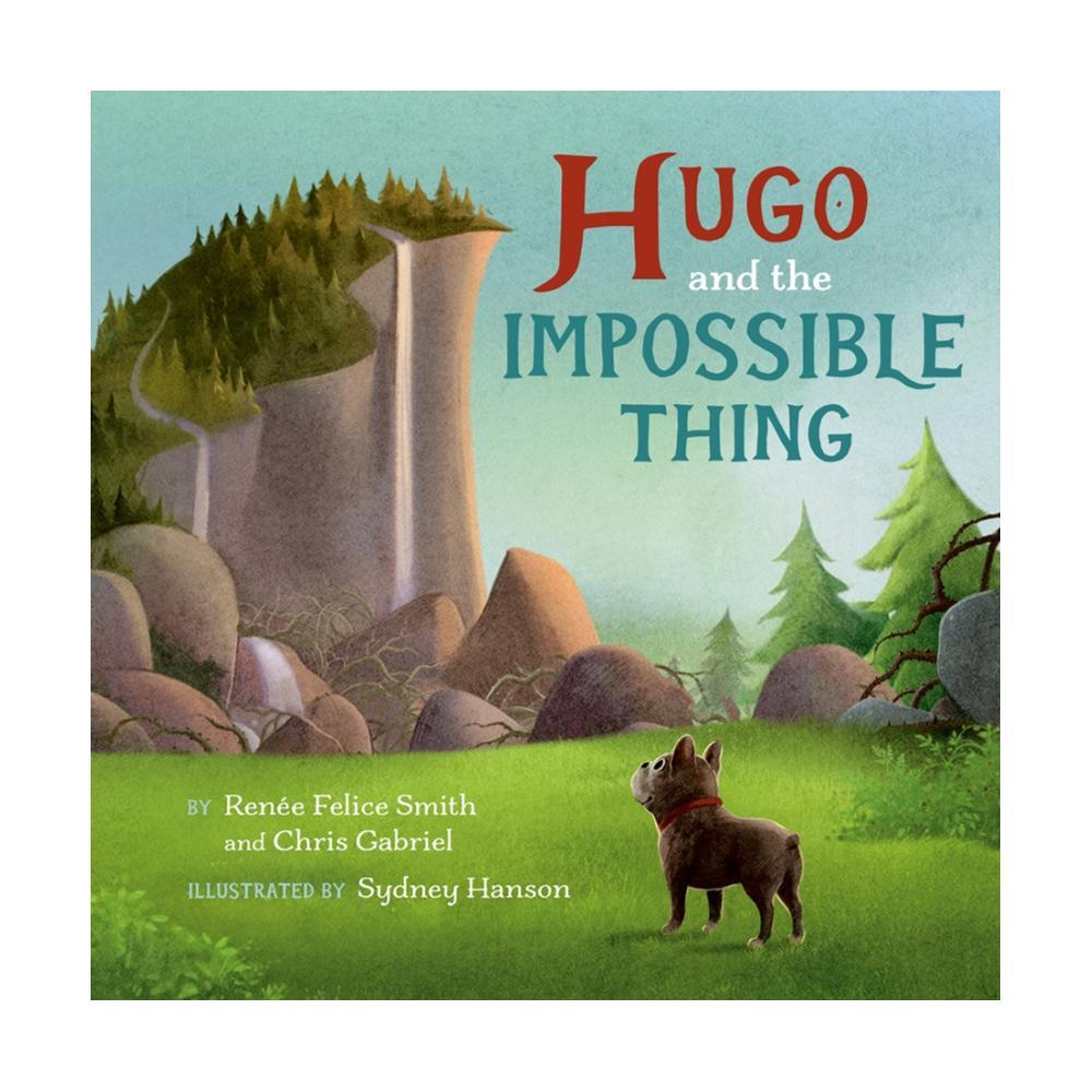 Hugo And The Impossible Thing By Renã © E Felice Smith And Chris Gabriel