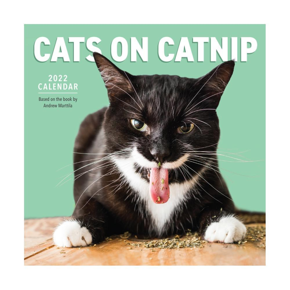 Cats on Catnip Wall Calendar 2022 2022